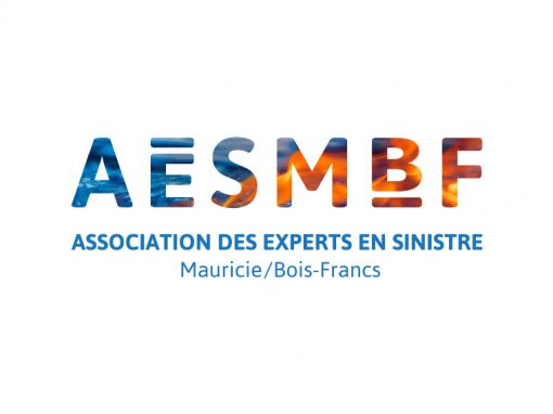 Association des experts en sinistre